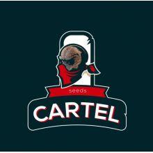 Cartel Seeds